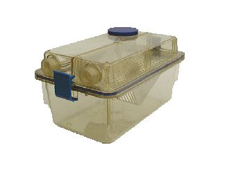 Sterile Animal Housing IVC cage